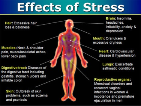 the affect of psychological stress on