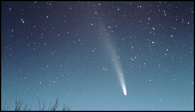 Bennett comet [Image Source]