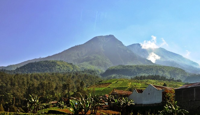 Gunung Lawu [Image Source]