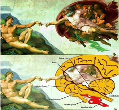 The Creation of Adam [Image Source]